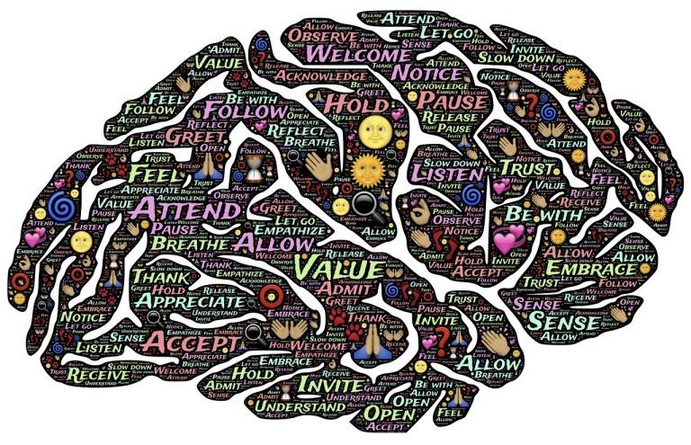 brain, knowledge, understand, memory, memory care, alzheimer's, dementia